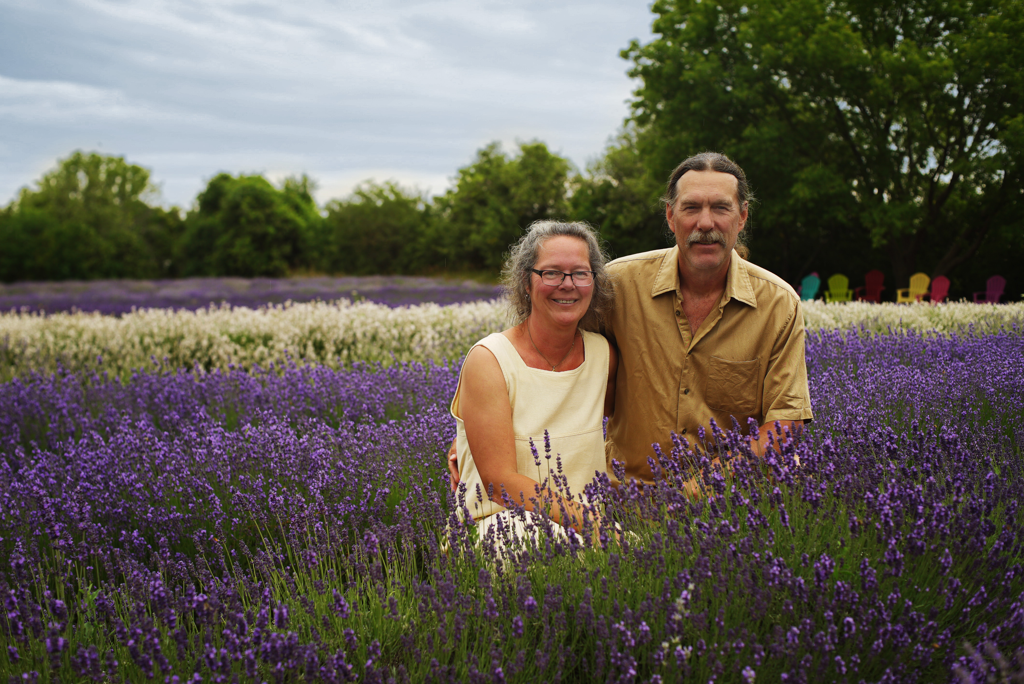 Prince Edward County Lavender Farm - Build a New Life